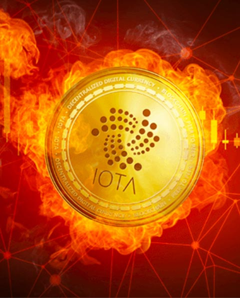 We provide you complete end to end services for iota tangle development