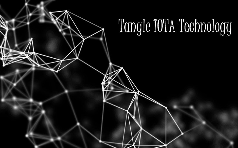 Kalibroida provides you solutions for iota tangle technology development solutions for your business